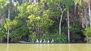 Kanuausflug Lake Sandoval im Tambopata-Nationalpark