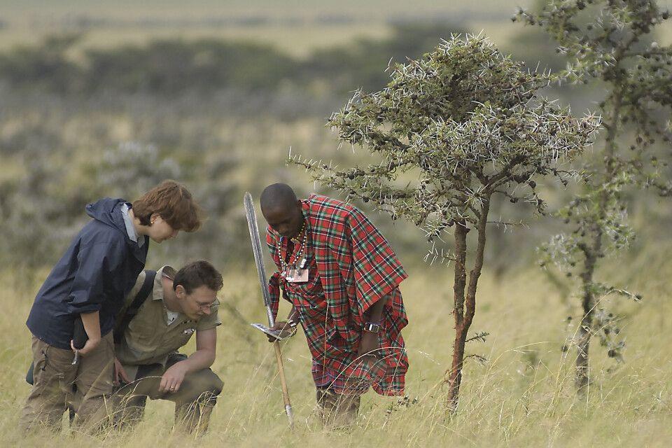 Ein Massai-Guide mit seinen Gästen auf Wandersafari