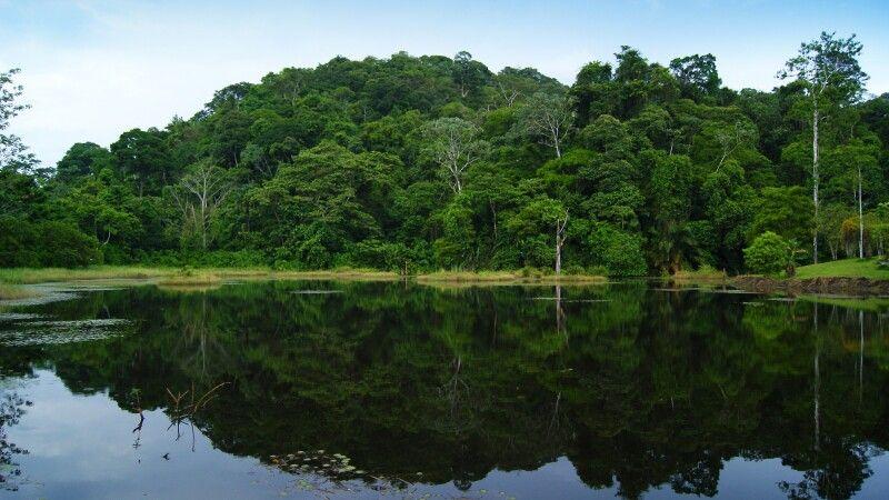 Maquenque Ecolodge in Boca Tapada, Costa Rica © Diamir
