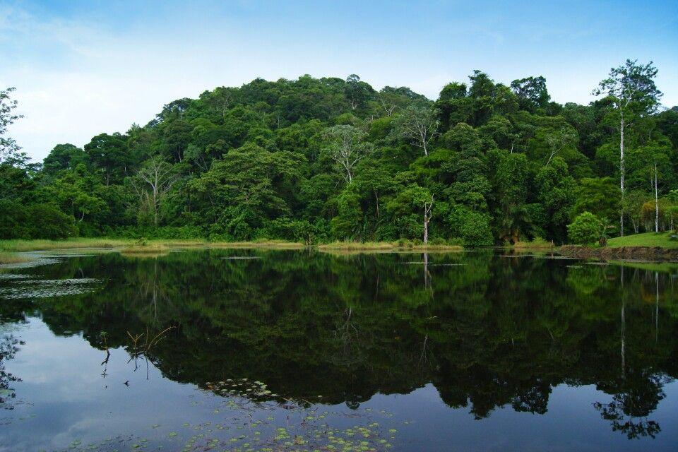 Maquenque Ecolodge in Boca Tapada, Costa Rica