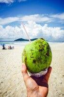 Ein erfrischendes Getränk aus der Kokosnuss