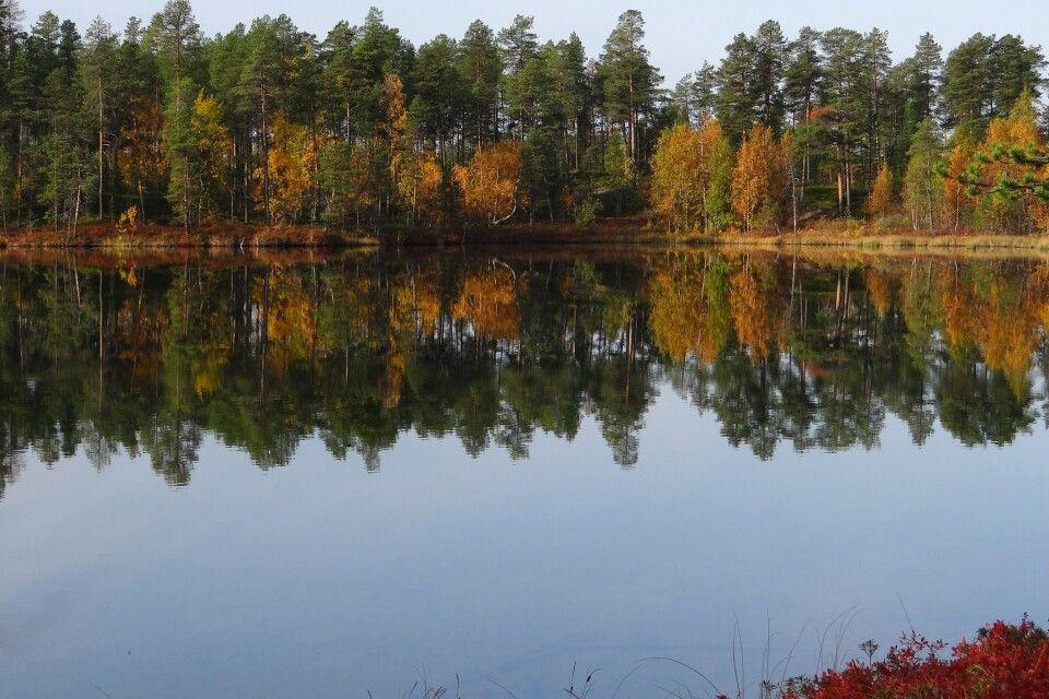 Finnland im Herbst
