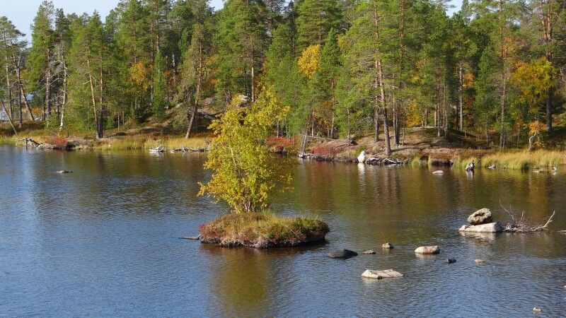 Finnland im Herbst © Diamir