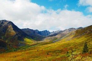 Der Yukon in satten Herbstfarben