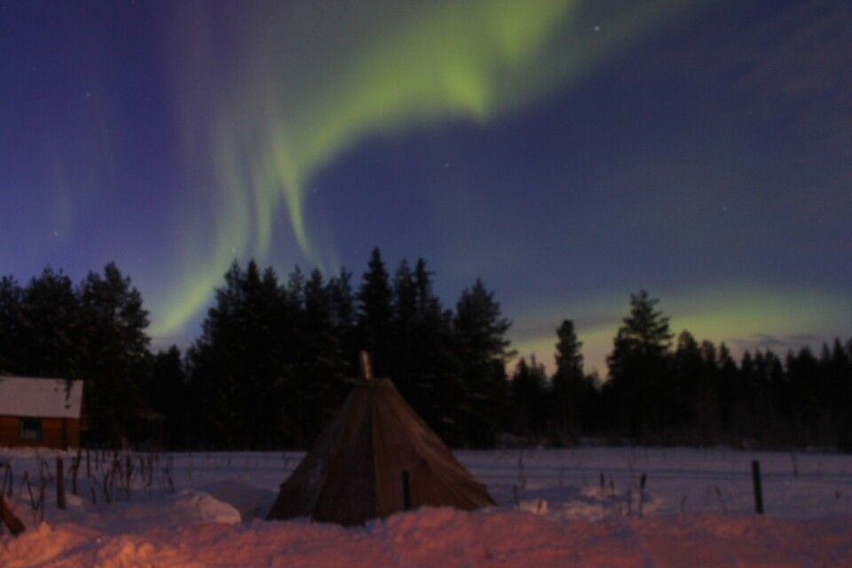 Winter ist Nordlichtsaison!