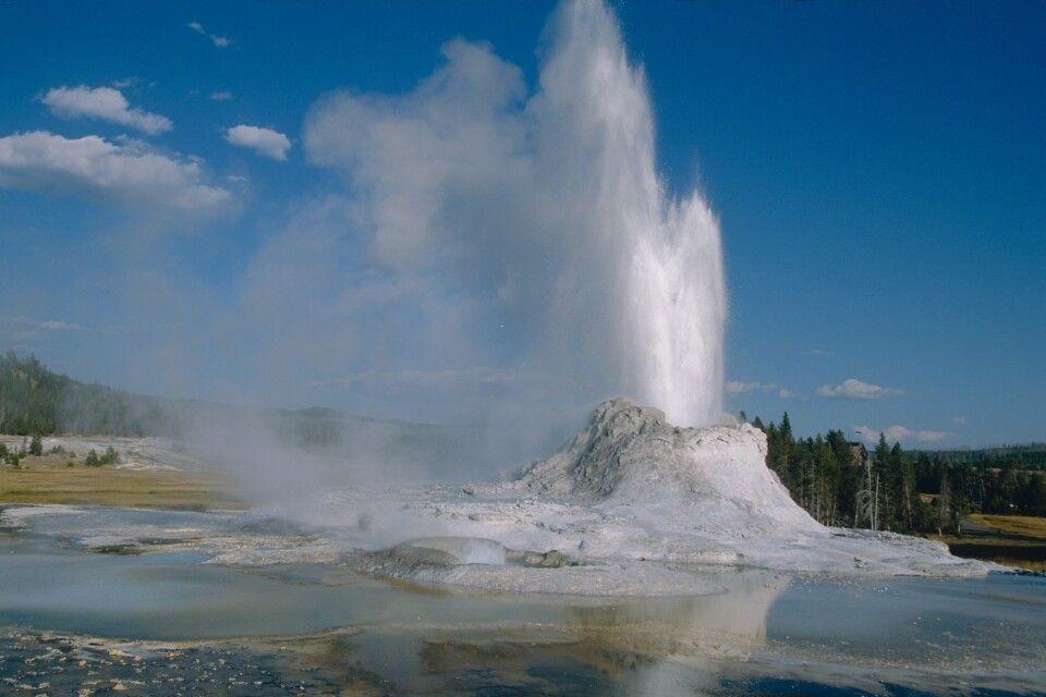Ausbrechender Geysir im Yellowstone NP