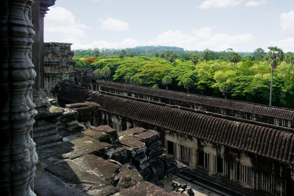 Blick von einem der Türme von Angkor Wat über den Dschungel