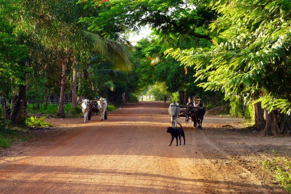 Morgenstimmung im Dorf Chambok