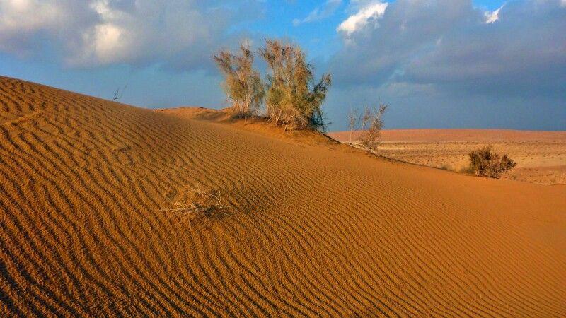 Wüste Karakum © Diamir