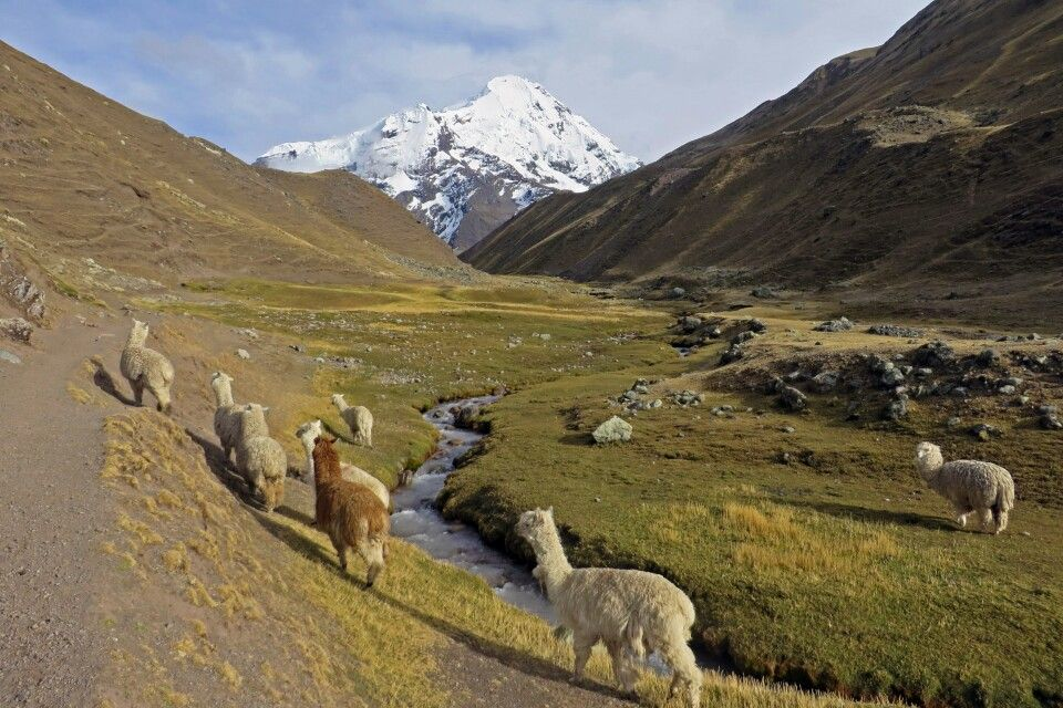 Cordillera Vilcanota mit Blick auf den Auzangate