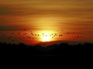 Sonnenuntergang in Kakadu