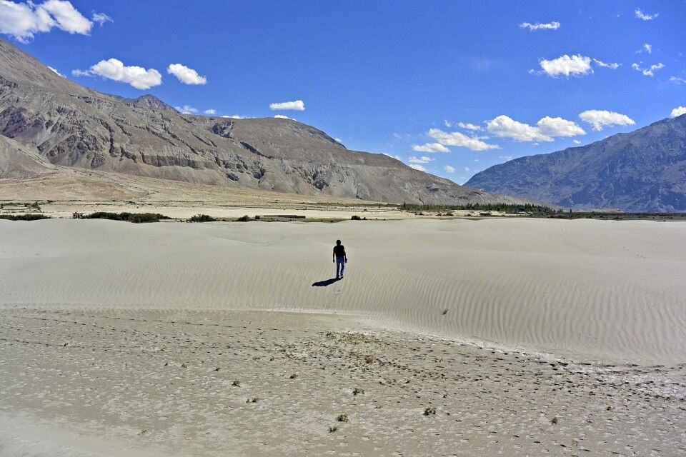 Nubra Valley, Sandünen am Nubra-Fluss