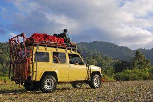 Mit dem Jeep durch Westjavas Wälder