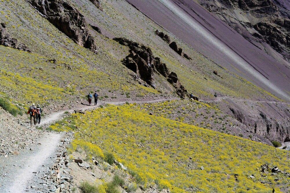 Markha Valley Trek, Abstieg nach Shang Sumdo