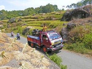 Public Transport in Toraja