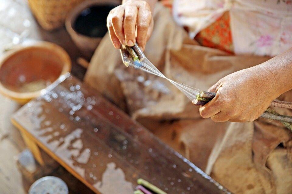 Ziehen der Lotosfasern aus den Strengeln zur Gewinnung der exquisiten Lotosseide