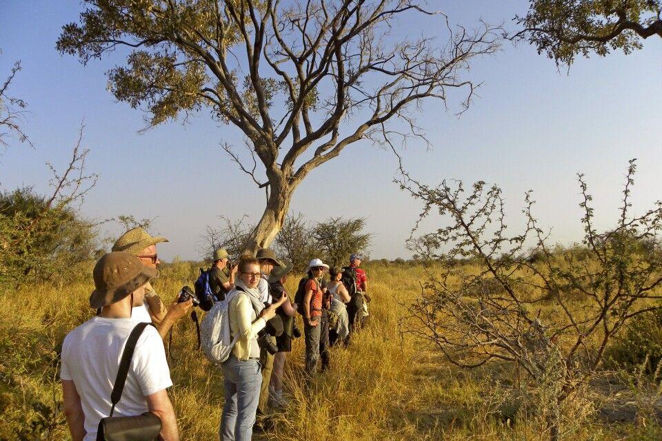 Okavango-Delta, Fußpirsch