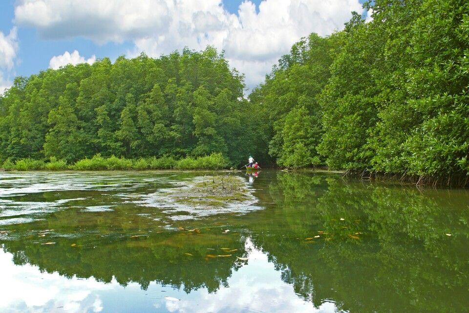 Ausflug in das Can Gio Mangrovenreservat