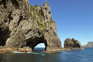 Der Elefant-Rock in der Bay of Islands nahe Paiha auf der Nordinsel Neuseelands