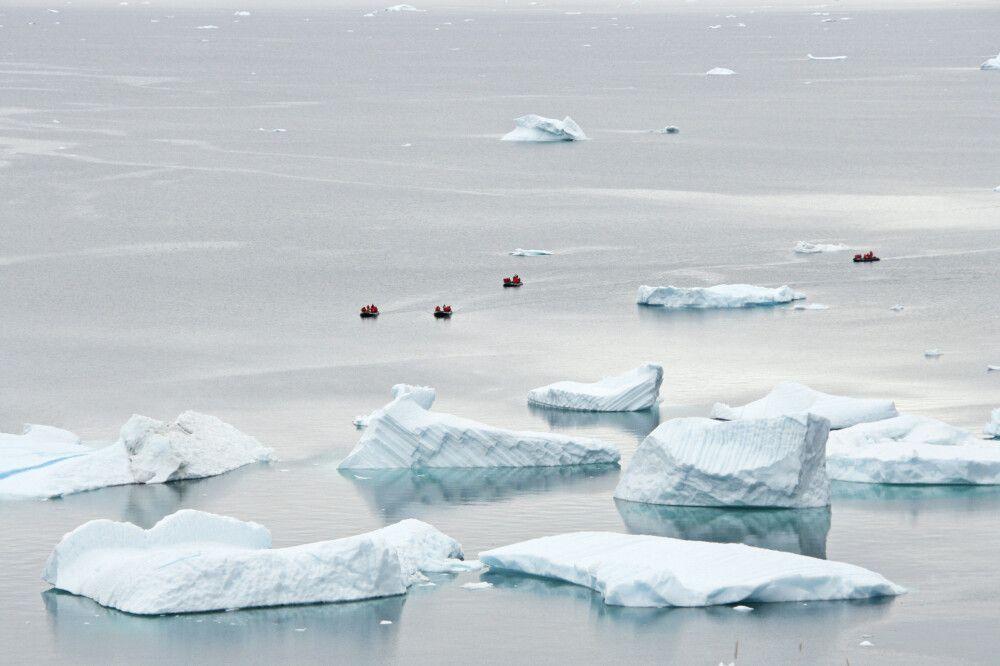 Zodiactour zwischen Eisbergen