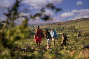 Buschwanderung im Mara North Conservancy