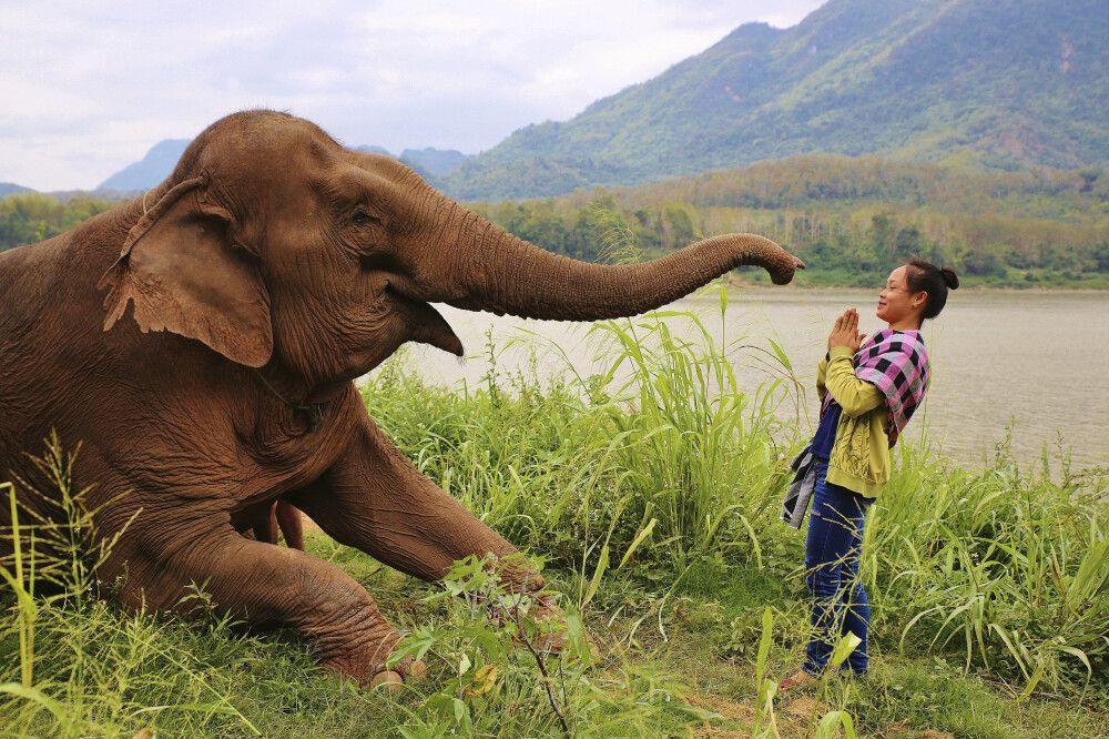 Begegnung am Mekong in Laos