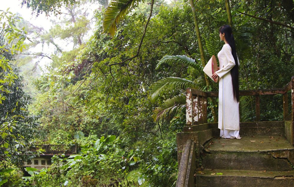 Im Cuc-Phuong-Nationalpark