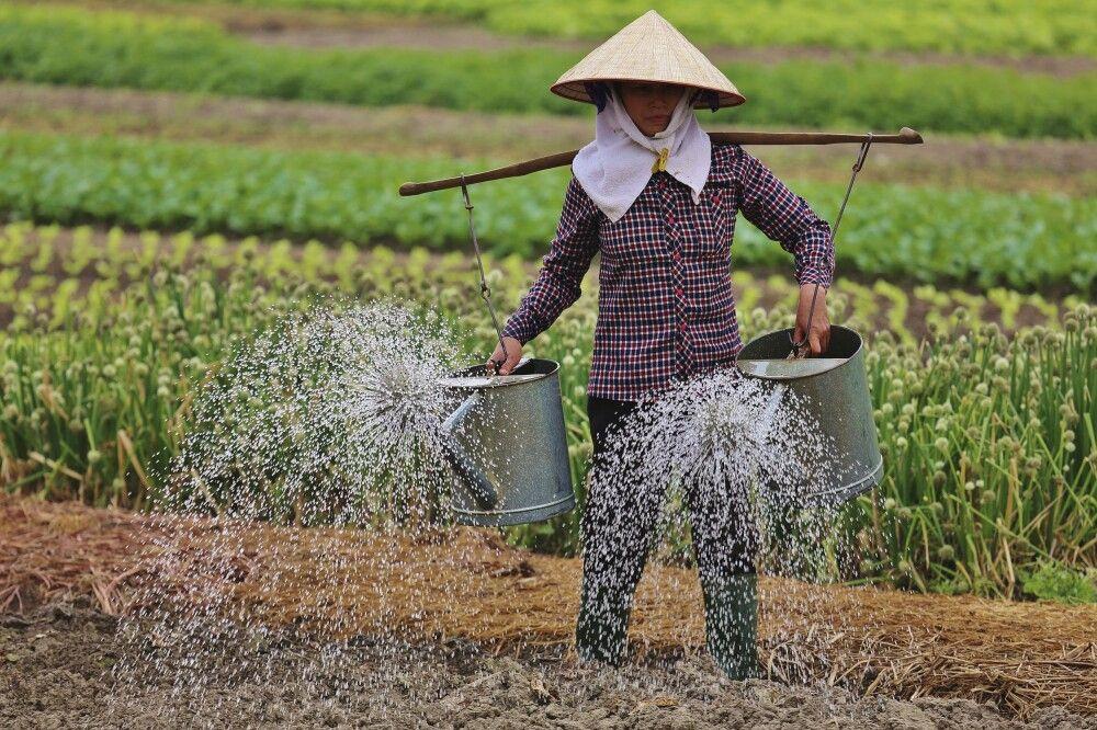 Bewässerung noch von Hand