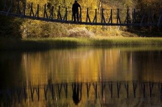 Spiegelspiele im Herbst