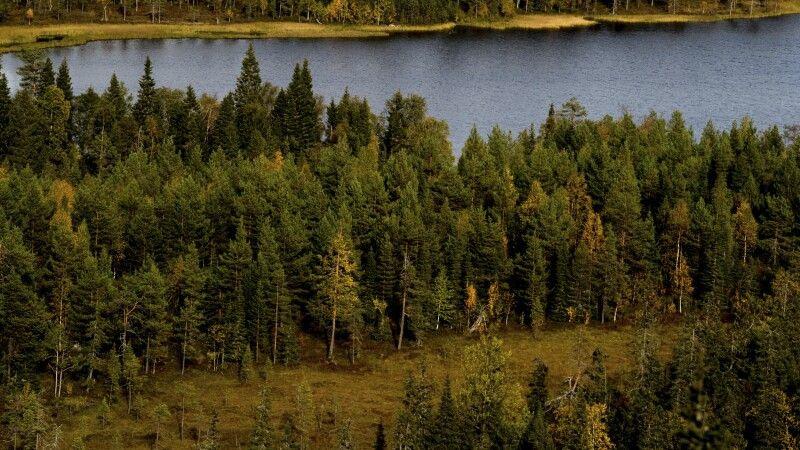 Herbstliche Landschaft © Diamir