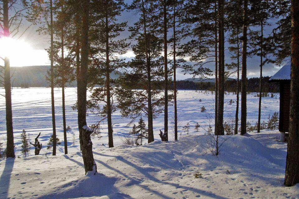 Der Ausblick auf einen zugefrorenen See