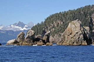 Eine Bootsfahrt durch den Kenai-Fjord bietet fantastische Landschaften