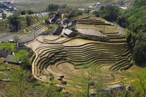 Terrassenfeldbau in Nordvietnam