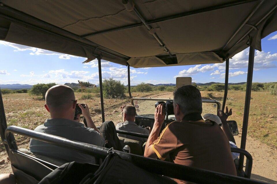Safariausfahrt auf GocheGanas