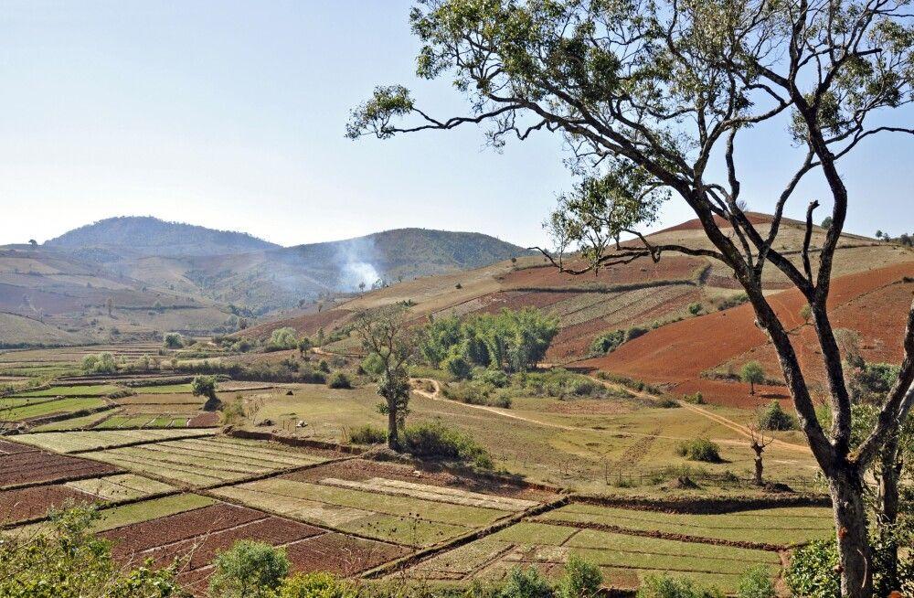 Landwirtschaft in den Hügeln rund um den Inle-See