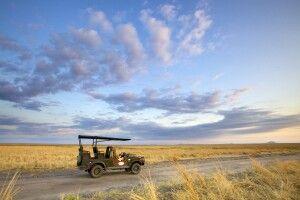 Auf Safari im Katavi Nationalpark