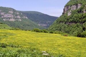 Canyon in der Region Tavusch
