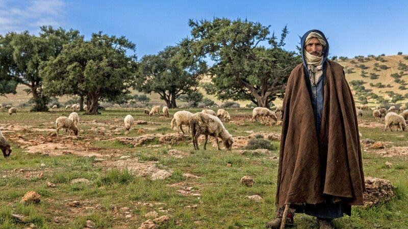 Hirte mit Schafen © Diamir