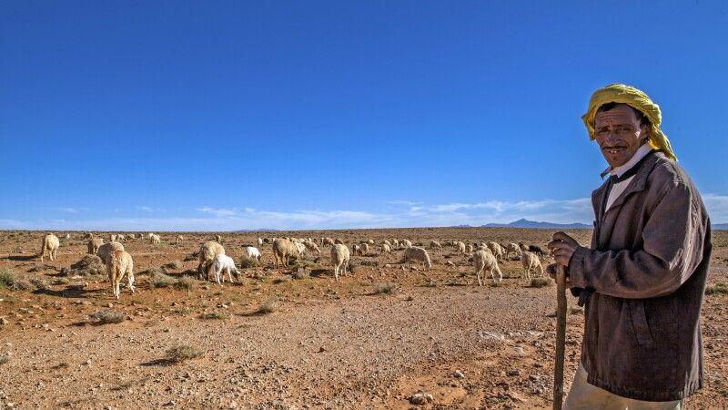 Schafhirte im Hohen Atlas © Diamir