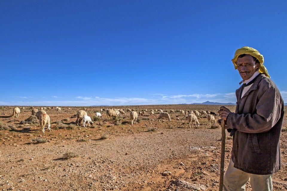 Schafhirte im Hohen Atlas