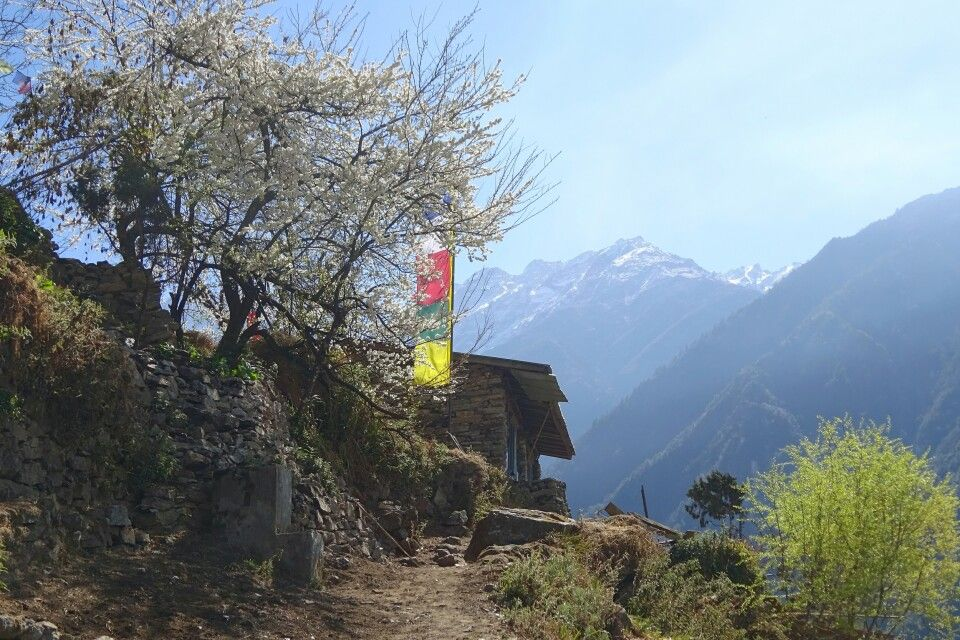 idyllisch gelegene Orte auf dem neuen Höhenpfad zwischen Khangjim und Lama Hotel
