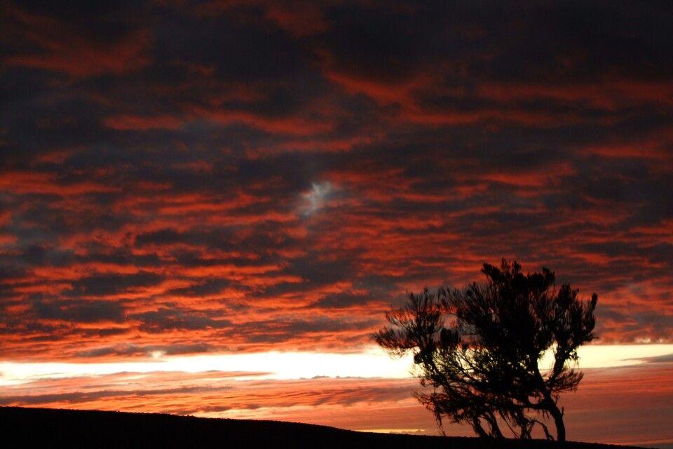 TANKOF2_060216_4FMU_Sonnenaufgang_beim_Abstieg_vom_Kili.jpg