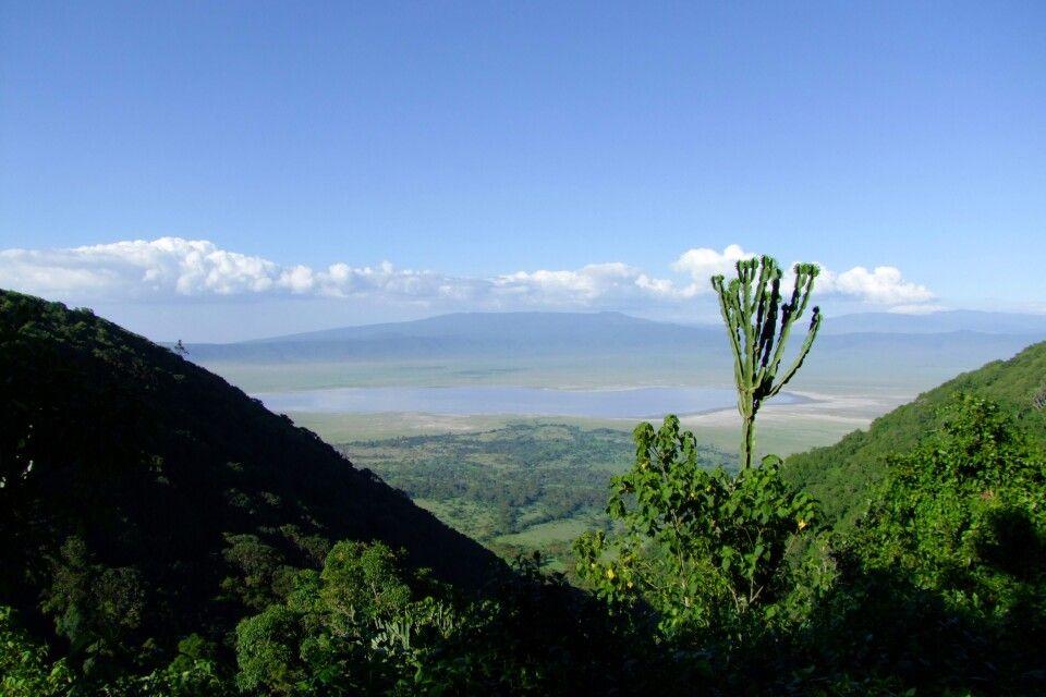 TANKOF2_060216_4FMU_Blick_in_den_Ngorongoro_Krater.jpg