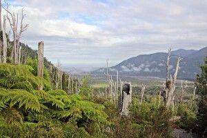 Landschaft nach dem Vulkanausbruch des Chaiten von 2008