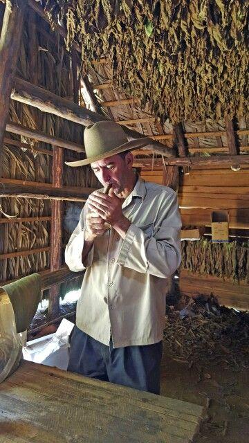 Typischer Tabakbauer im Viñales-Tal