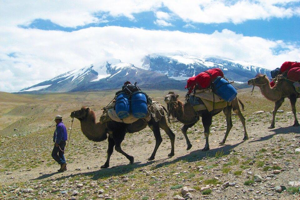 Der Materialtransport ins Basislager des Muztagh Ata erfolgt mit Kamelen oder per Jeep.