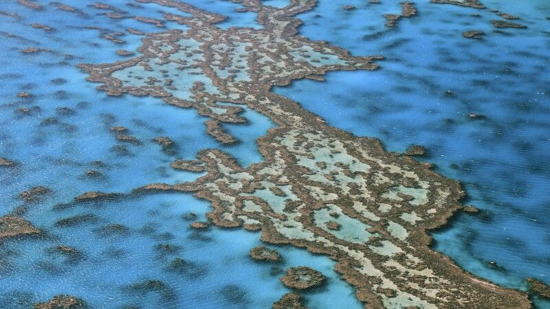 Great_Barrier_Reef_ © Diamir