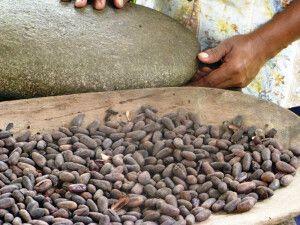 Kakao in Costa Rica