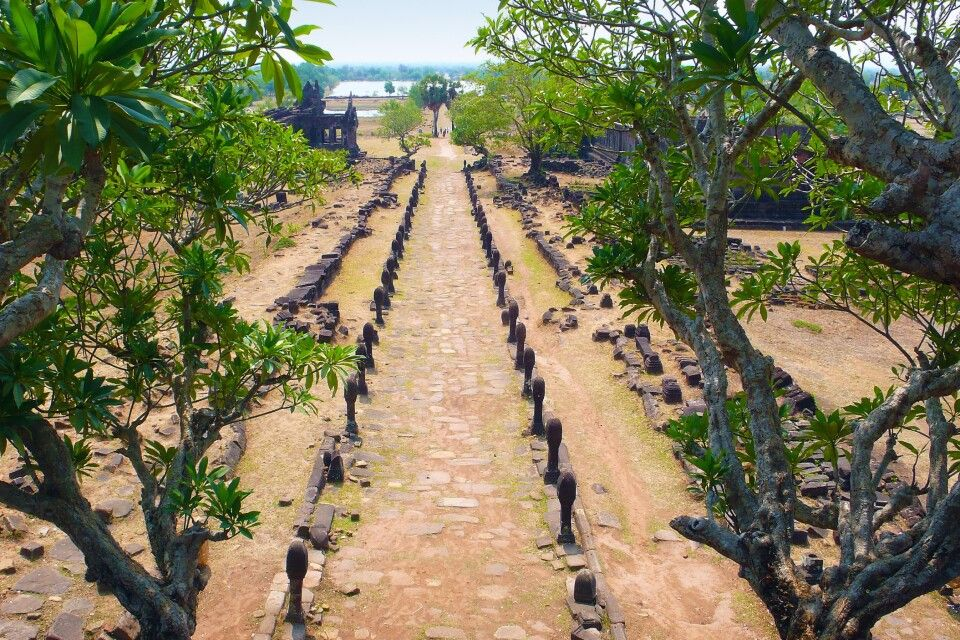Frangipanibäume neigen sich über die Galerie, die zum Tempel von Wat Phou führt