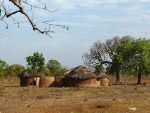 Ghana, Dorf, Huette